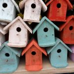 Malý kutil - ptačí budky