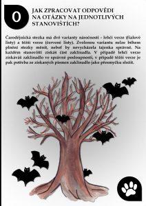 Čarodějnická stezka - netopýři