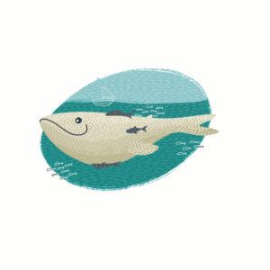 Velryba - náhled